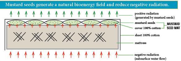 zyly wodne ochrona bezsennosc materac bio
