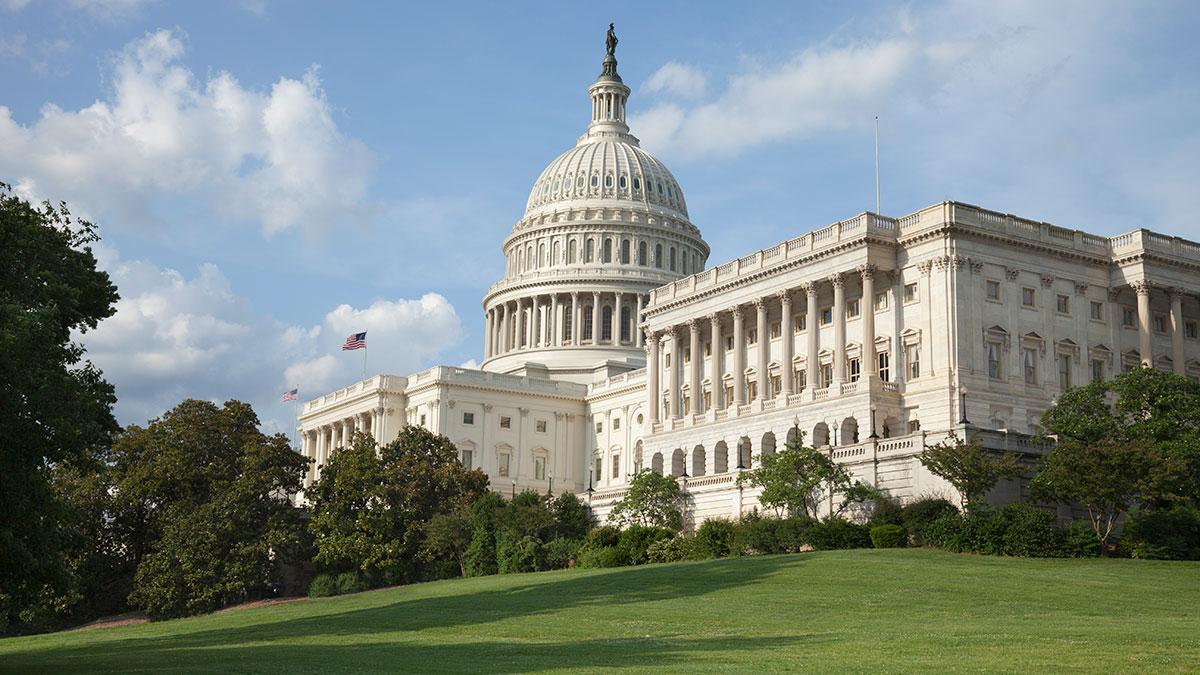 Amerykańska Polonia odpowiada na list 88 senatorów