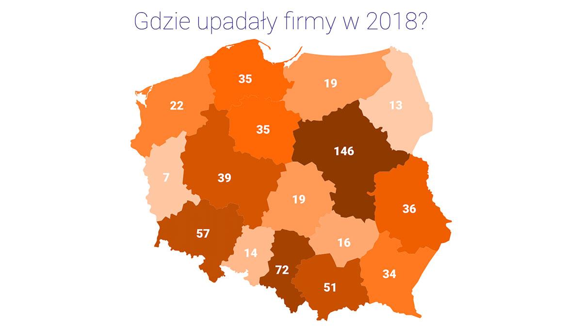 Coraz więcej firm w Polsce ma problemy finansowe, są niewypłacalne. Czy przedsiębiorcy liczą się z ryzykiem?