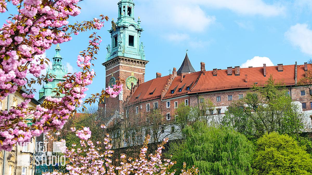 Zielone dachy i ściany w Krakowie