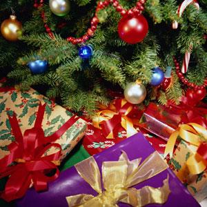 """Warsztaty świąteczne dla dzieci na Greenpoincie  """"Dlaczego choinka i dlaczego taka piękna?"""""""