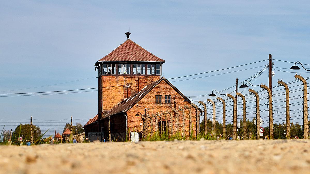 List otwarty byłego więźnia Auschwitz Birkenau