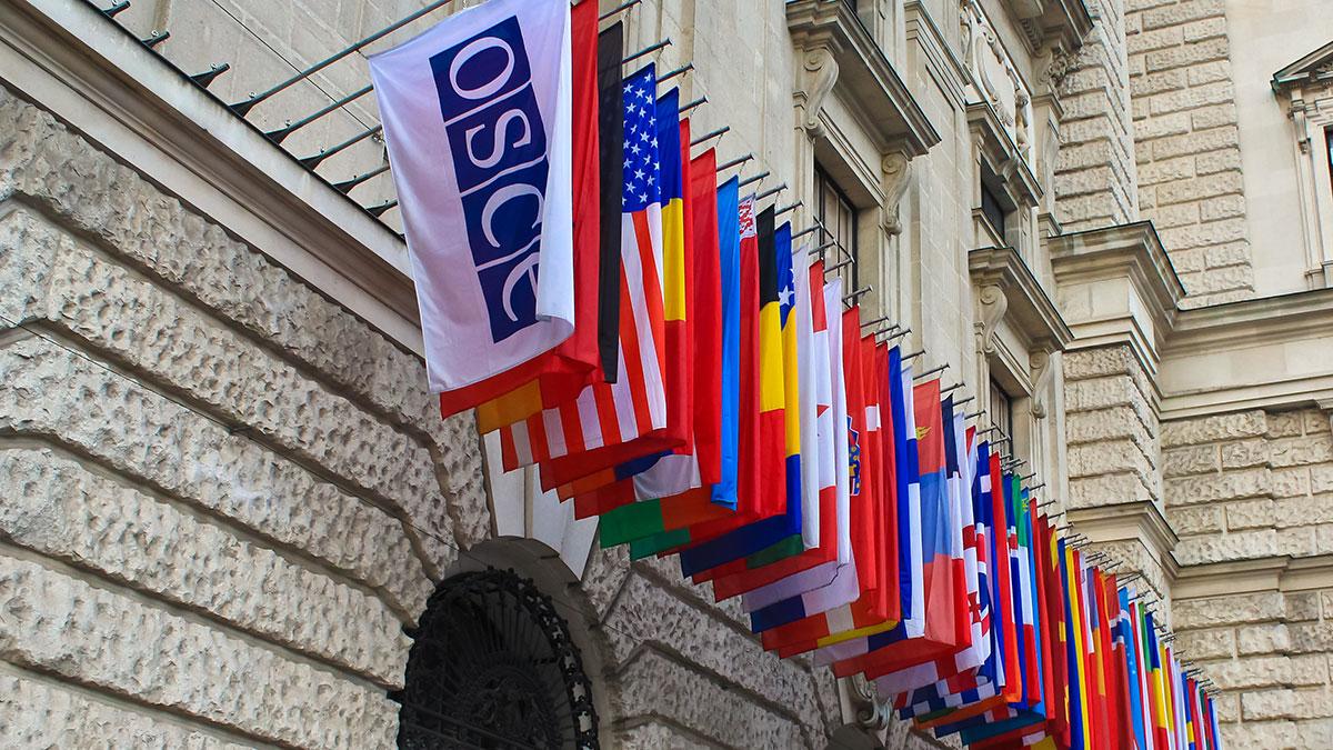 OBWE oświadcza: polskie wybory prezydenckie nie będą demokratyczne.