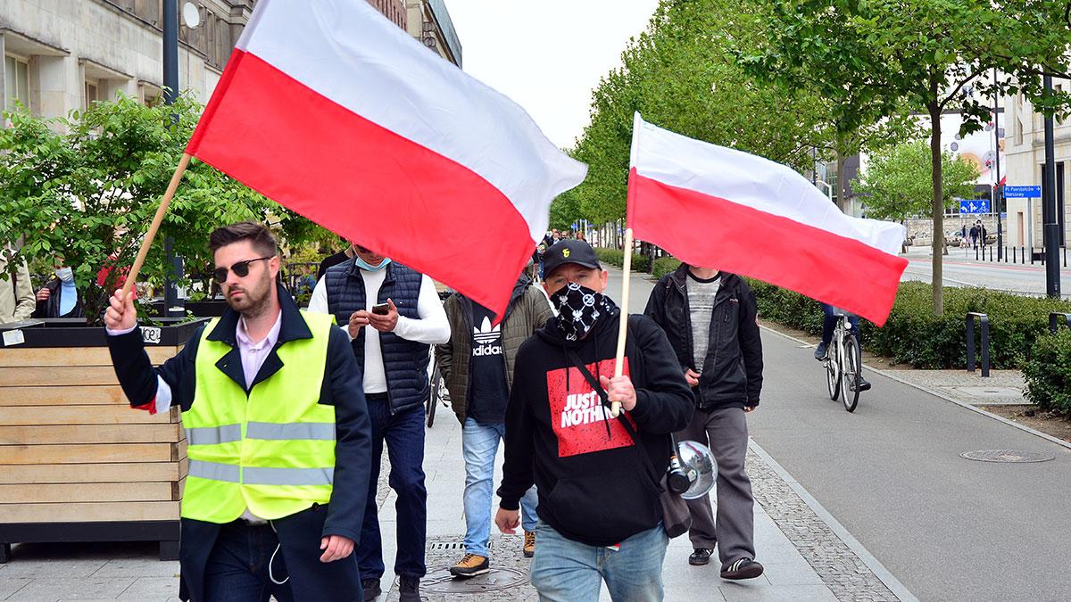 Polska wersja demokracji bezpośredniej