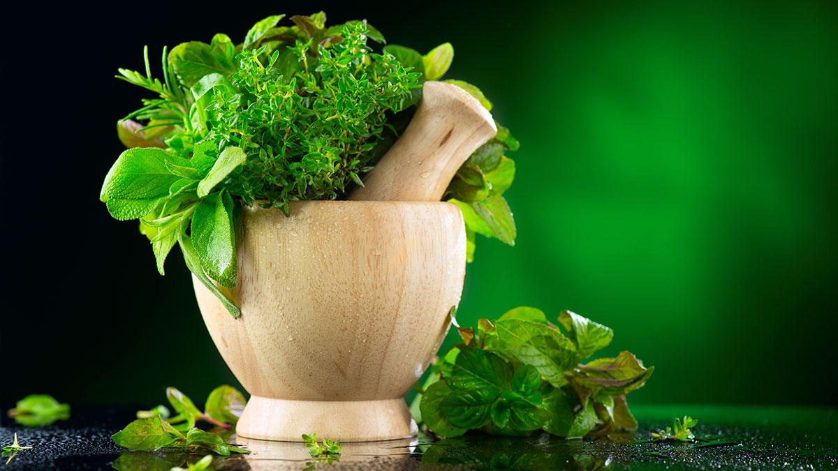 Najlepsze polskie zioła w USA z apteki w Nowym Jorku