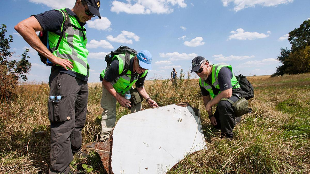 """Haga wnosi sprawę przeciwko Rosji """"o jej rolę w zniszczeniu samolotu MH17"""""""
