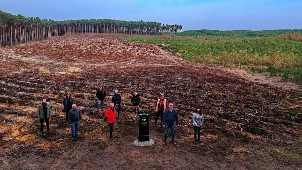Na 462. rocznicę powołania Poczty Polskiej posadzono 462 drzew!