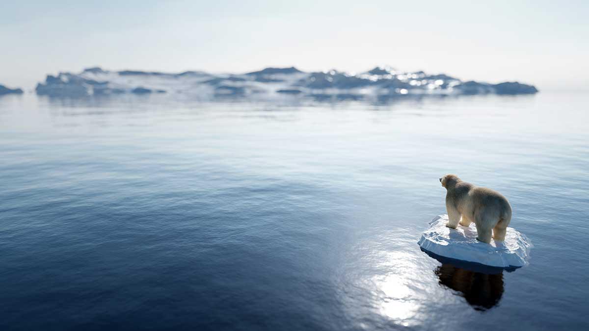 """Ponad 41 bilionów dolarów czeka na """"zielone"""" inwestycje w walce z globalnym ociepleniem"""